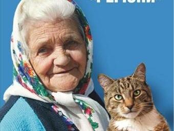 Скажений кіт покусав чотирьох людей на Львівщині - Цензор.НЕТ 6188