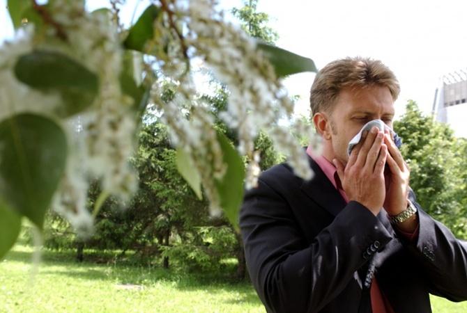 Аллергия на березу какая диета