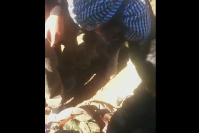 специально разработанного судьба второго летчика сбитого су 24 в сирии выбирать более