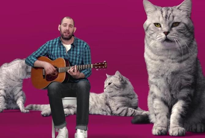 Песня семёна слепакова кот