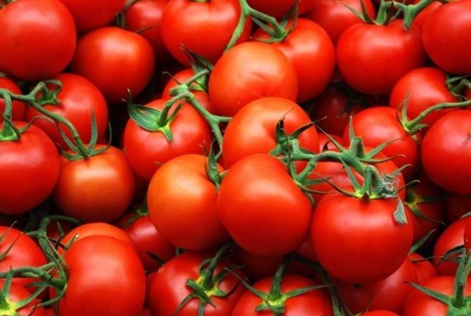Ученые выяснили, почему раньше помидоры были вкуснее