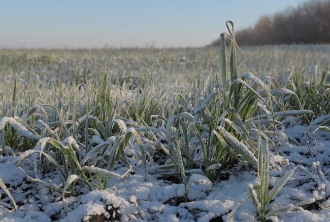 Зима недалёко: украинцев предупредили о будущих заморозках