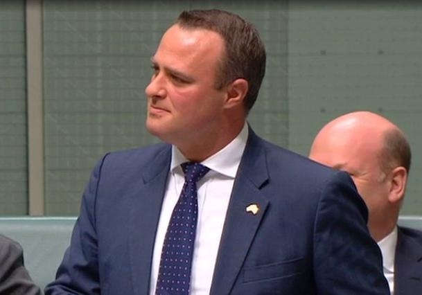 Австралийский депутат сделал предложение своему избраннику впарламенте