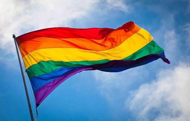 Конституционный суд Австрии узаконил однополые браки вгосударстве с2019 года