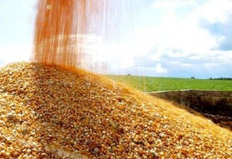 Украина израсходовала годовую квоту наэкспорт меда вЕС задесять дней