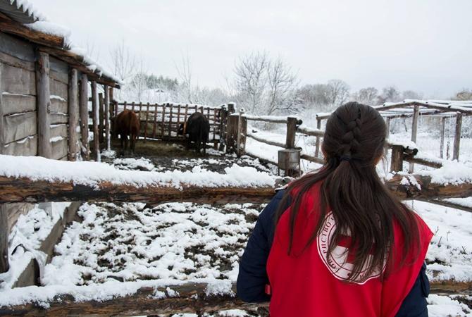 Красный Крест направил вДонецк 28 грузовиков сгуманитаркой