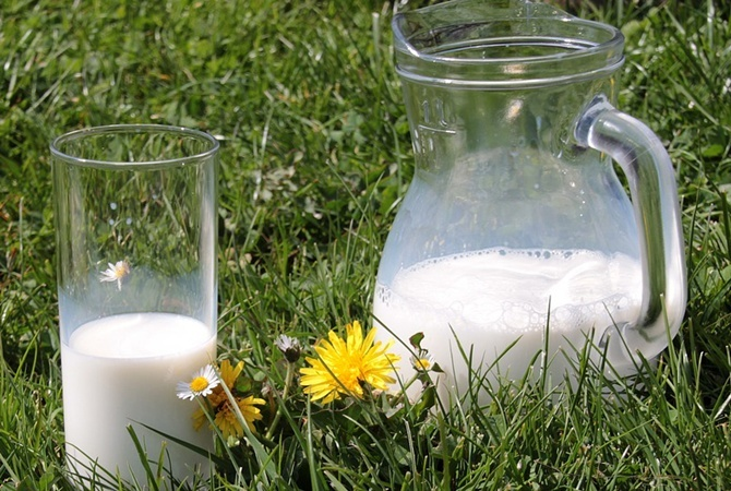 Молоко  убивает  красоту и молодость