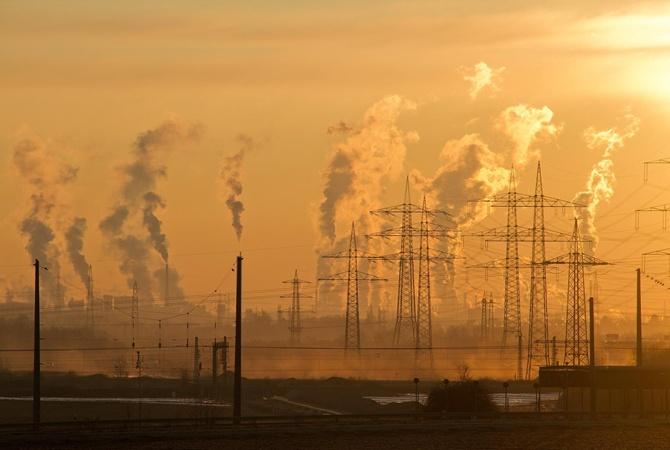 В Greenpeace заявили, что мир ежедневно теряет 8 миллиардов долларов