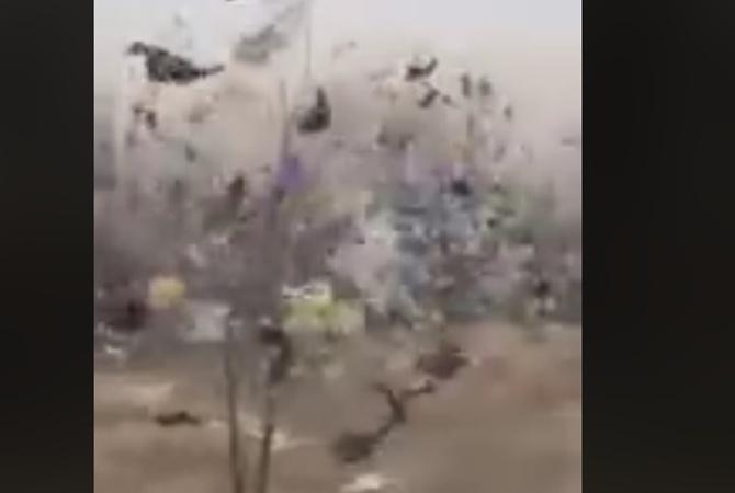 Как в фильме ужасов : после шторма Николаев  украсили  десятки тысяч пакетов