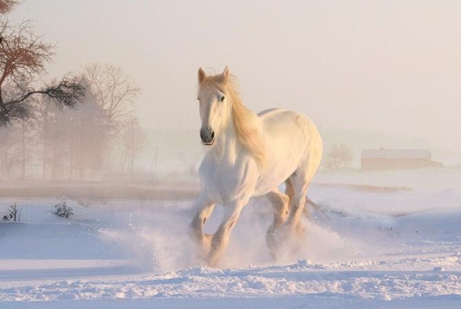 Грядущая зима в Украине будет чрезвычайно теплой