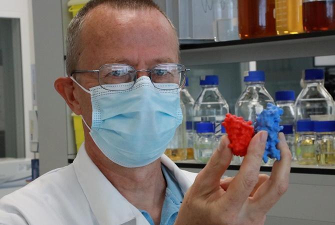 Тесты на антитела: сдавать или нет?