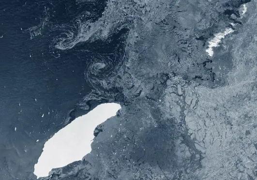 Шосте вимирання видыв: Барёэрний риф зник
